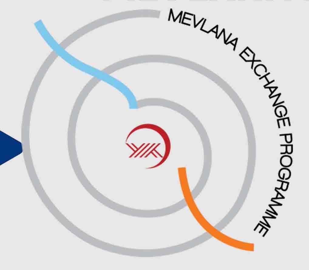 mevlana logo